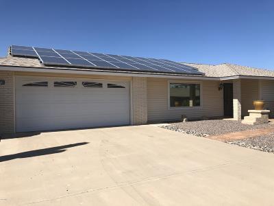 Sun City AZ Single Family Home For Sale: $319,000