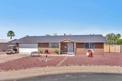 Sun City AZ Single Family Home For Sale: $239,900
