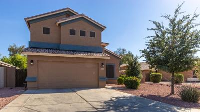 Litchfield Park Single Family Home For Sale: 13723 W Marissa Drive