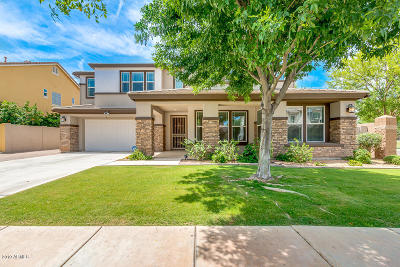 Gilbert Single Family Home For Sale: 3643 E Comstock Drive