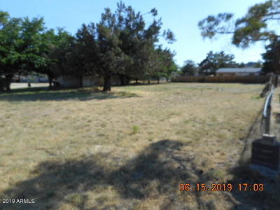 Residential Lots & Land For Sale: 23346 S Mountainaire Drive