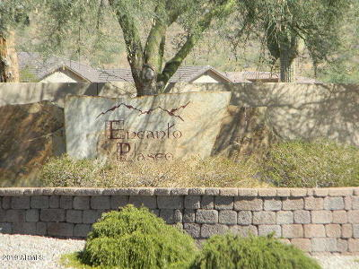 Queen Creek Residential Lots & Land For Sale: 34213 N Paseo Grande Drive