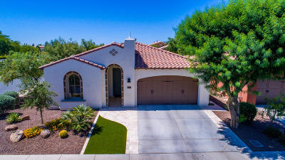 Queen Creek, San Tan Valley Single Family Home For Sale: 1503 E Vesper Trail