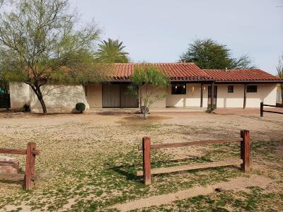 Paradise Valley Single Family Home For Sale: 6200 N Mockingbird Lane