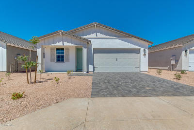 San Tan Valley Single Family Home For Sale: 37648 N Poplar Road