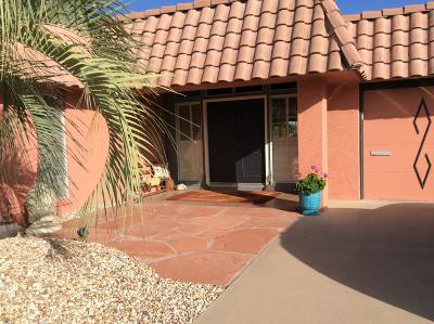 Sun City Rental For Rent: 9401 W Briarwood Circle