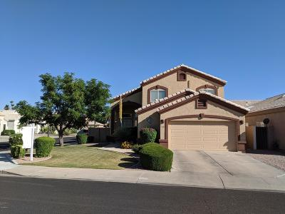 Gilbert Single Family Home For Sale: 1331 W Seashore Drive