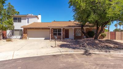 Phoenix Single Family Home For Sale: 10207 S 43rd Court