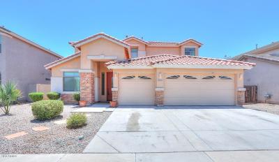 Maricopa Single Family Home For Sale: 43489 W Cydnee Drive
