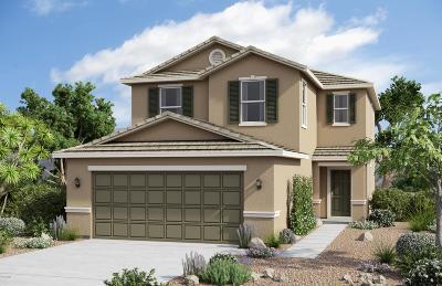 Maricopa Single Family Home For Sale: 40572 W Helen Court