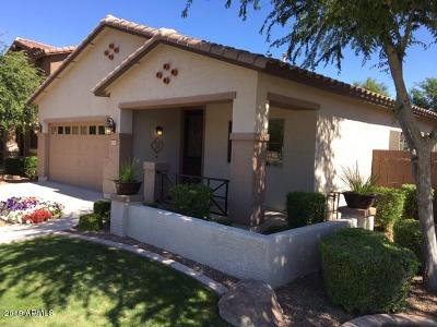 Queen Creek Single Family Home For Sale: 386 W Lyle Avenue