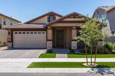 Gilbert Single Family Home For Sale: 2046 S Henry Lane