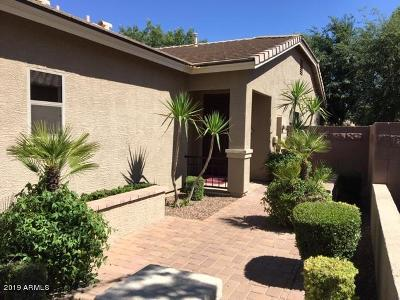 Queen Creek Single Family Home For Sale: 374 W Lyle Avenue