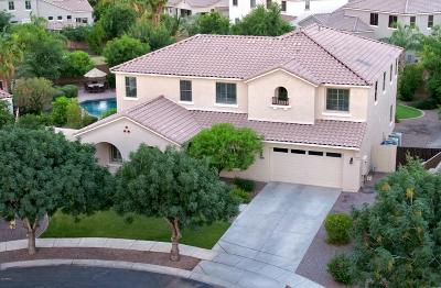 Gilbert AZ Single Family Home For Sale: $614,000