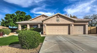 Peoria Single Family Home For Sale: 8541 W Cameron Drive