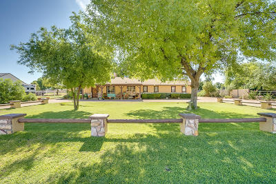 Gilbert Single Family Home For Sale: 1115 S 130th Street
