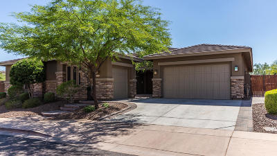 Peoria, Glendale Single Family Home For Sale: 31762 N 129th Drive