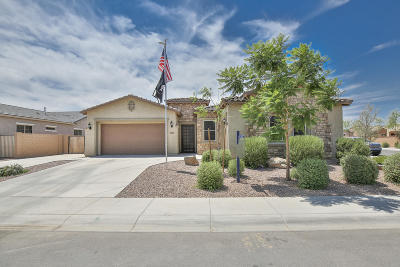 Mesa Single Family Home For Sale: 11043 E Tumbleweed Avenue