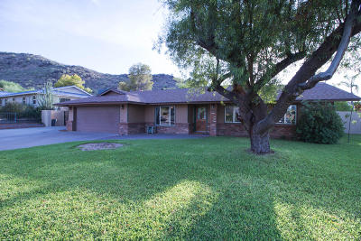 Phoenix Single Family Home For Sale: 12810 N 17th Avenue