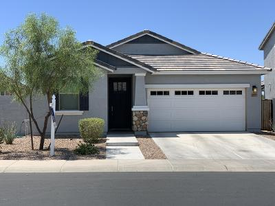Mesa Single Family Home For Sale: 3207 E Russell Street