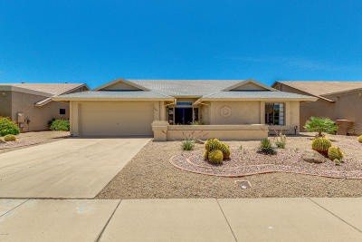 Peoria Single Family Home For Sale: 9815 W Rosemonte Drive