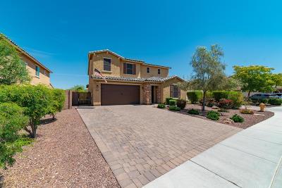Phoenix Single Family Home For Sale: 2530 W Brisa Drive