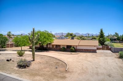 Phoenix Single Family Home For Sale: 16223 N 40th Place