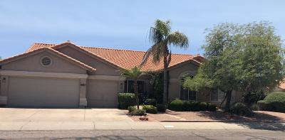 Phoenix Single Family Home For Sale: 4617 E Hearn Road