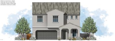 Casa Grande Single Family Home For Sale: 1760 E Desert Breeze Place