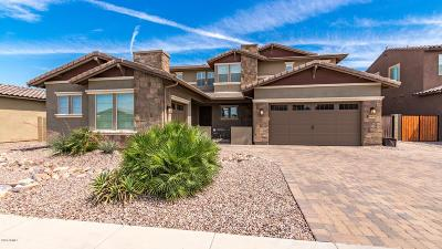 Gilbert Single Family Home For Sale: 3480 E Penedes Drive