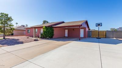 Glendale Single Family Home For Sale: 4918 W Aster Drive