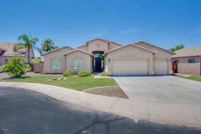 Maricopa Single Family Home For Sale: 21946 N Desert Park Court