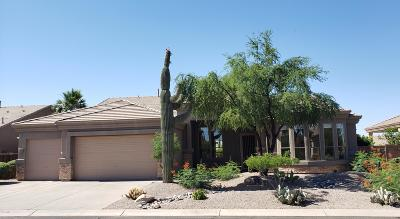 Mesa Single Family Home For Sale: 9507 E Nora Circle