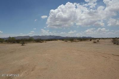 Surprise Residential Lots & Land For Sale: N Pinnacle Peak Rd Avenue