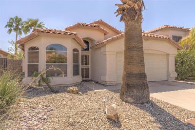 Glendale AZ Single Family Home For Sale: $317,000