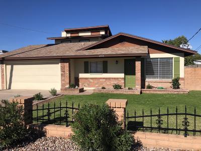 Tempe Single Family Home For Sale: 2518 E McArthur Drive