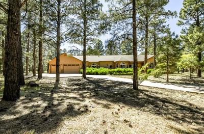 Flagstaff Single Family Home For Sale: 11890 N Copeland Lane