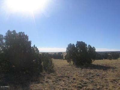 Overgaard AZ Residential Lots & Land For Sale: $28,900