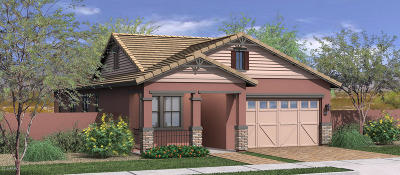 Gilbert Single Family Home For Sale: 3556 E Spring Wheat Lane