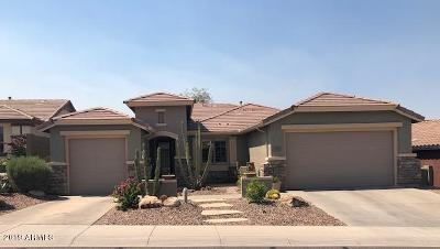 Anthem Single Family Home For Sale: 3635 W Magellan Drive