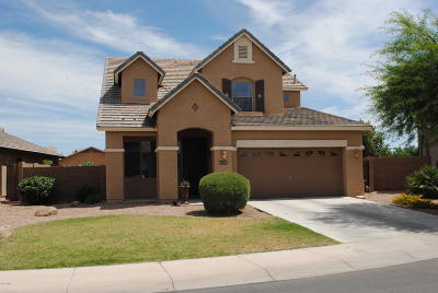Maricopa Single Family Home For Sale: 41588 W Avella Drive