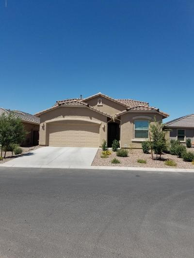 San Tan Valley Rental For Rent: 832 W Lowell Drive