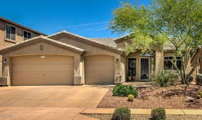 Phoenix Single Family Home For Sale: 2707 W Via Bona Fortuna