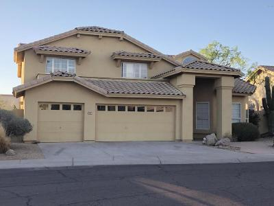 Cave Creek Single Family Home For Sale: 4530 E Rancho Laredo Drive