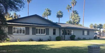 Phoenix Single Family Home For Sale: 902 W Linger Lane