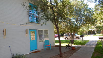 Tempe Rental For Rent: 2025 S Granada Drive #14