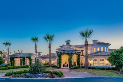 Mesa AZ Single Family Home For Sale: $2,450,000