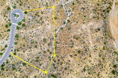 Scottsdale Residential Lots & Land For Sale: 12459 E Desert Vista Drive