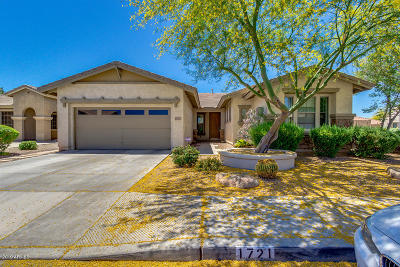 Chandler Single Family Home For Sale: 1721 W Kingbird Drive