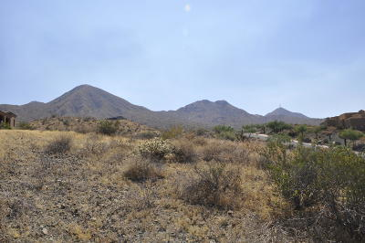 Fountain Hills Residential Lots & Land For Sale: 14211 E Coyote Way